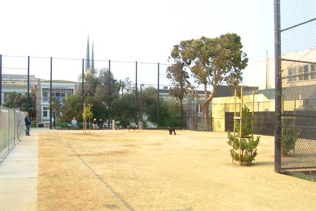 Joby's Run - Upper Noe Dog Play Area